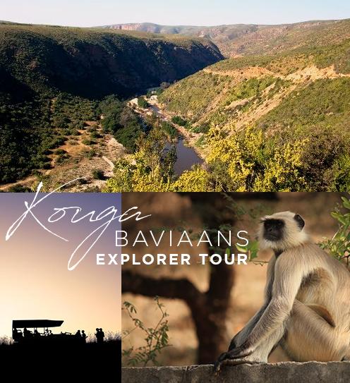 Kouga-Baviaans Explorer Tour 2020
