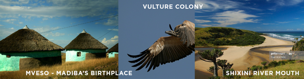 Mveso (Mandela's birthplace), vulture colony, Shixini River Mouth - Eastern Cape