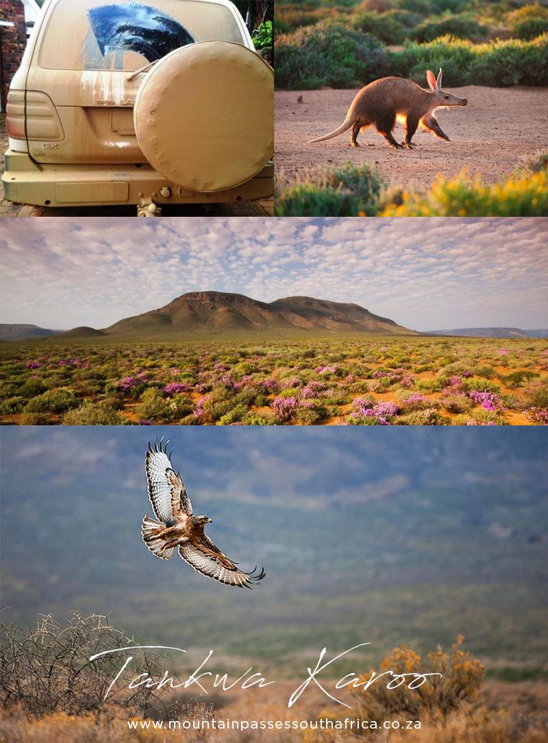 Tankwa Karoo - Travel Blog - Mountain Passes South Africa